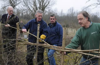 hedgelaying lesson
